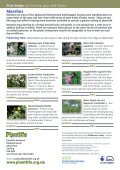 Marshes - Plantlife - Page 2