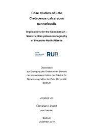 Case studies of Late Cretaceous calcareous nannofossils - Ruhr ...