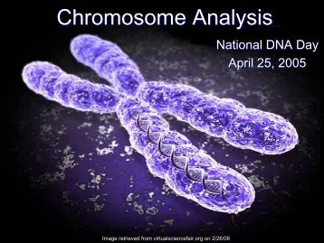 Chromosome Analysis - National Human Genome Research Institute