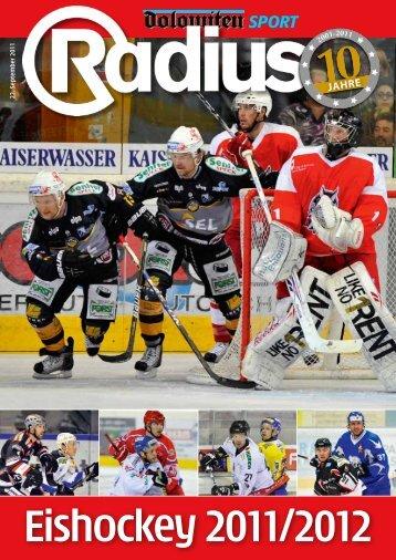 Eishockey 2011/12