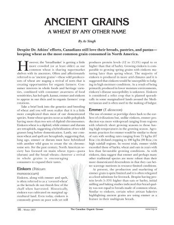 ANCIENT GRAINS - Canadian Organic Growers