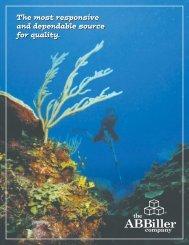 Download A Catalog - A.B. Biller
