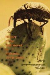 boll weevil.indd - Alabama Agricultural Experiment Station - Auburn ...