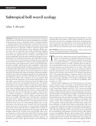 Subtropical boll weevil ecology