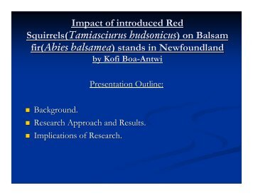 Impact of Introduced Red Squirrels on Balsam Fir Stands in ...