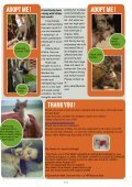 news letter JAAN november 2012 - Jakarta Animal Aid Network - Page 5
