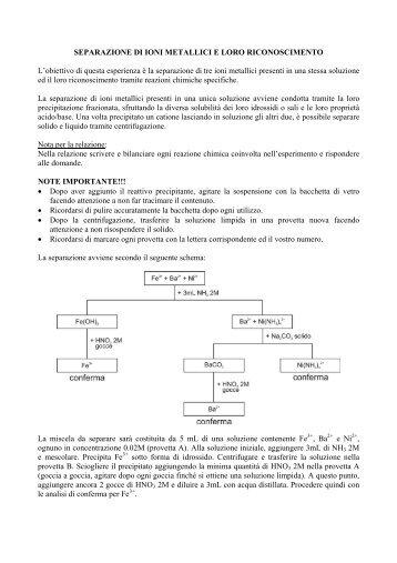 SEPARAZIONE DI IONI METALLICI E LORO RICONOSCIMENTO L ...