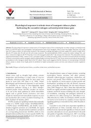 Physiological responses to nitrate stress of transgenic tobacco ...