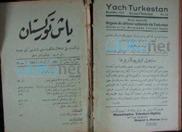 y Turkestan