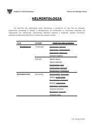 HELMINTOLOGIA - Página não encontrada