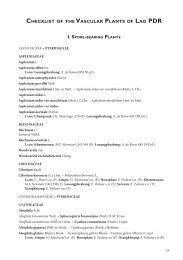 CHECKLIST OF THE VASCULAR PLANTS OF LAO PDR