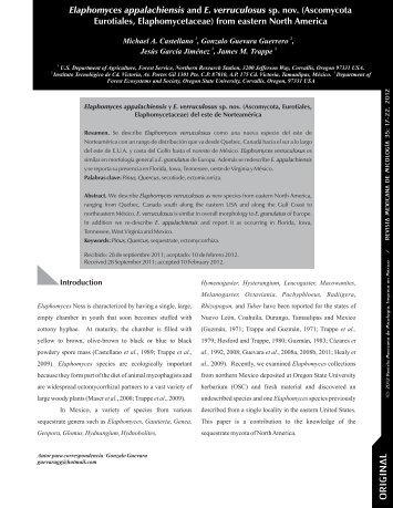 Vol. 35 Imprenta - Revista Mexicana de Micologia