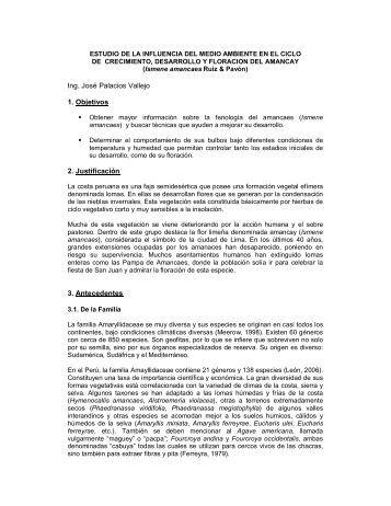 Ing. José Palacios Vallejo 1. Objetivos 2. Justificación 3. Antecedentes