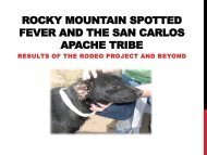 Rocky Mountain Spotted Fever and the San Carlos - Arizona ...