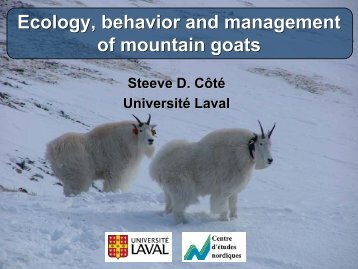 Ecology, Behavior and Management of Mountain Goats