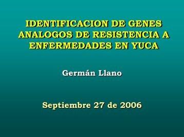 IDENTIFICACION DE GENES ANALOGOS DE RESISTENCIA A ...