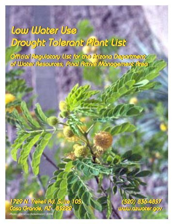 Drought Tolerant / Low Water Use Plant List - Arizona Department of ...