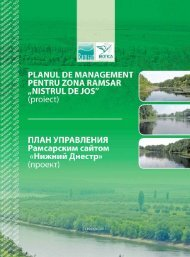 Planul de management pentru zona Ramsar