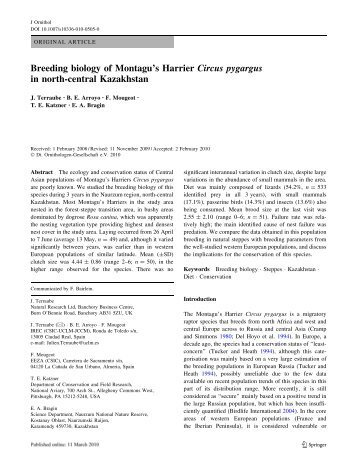 Breeding biology of Montagu's Harrier Circus pygargus in north ...