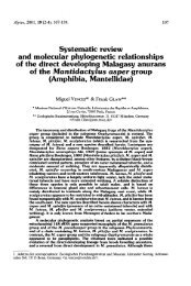 Systematic review and molecular phylogenetic relationships of the ...