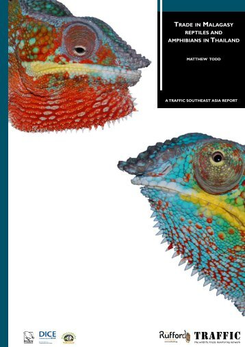 Trade in Malagasy reptiles and amphibians in Thailand (PDF, 1.2 MB)