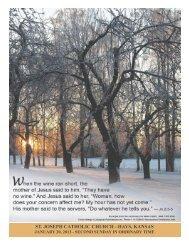 Jan 20 (Bulletin) - Seek And Find