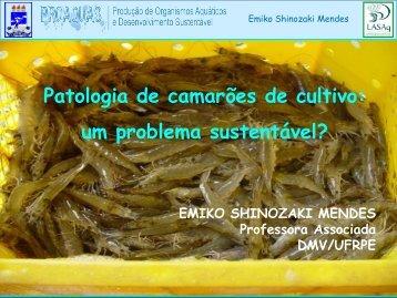 Patologia de camarões de cultivo: um problema sustentável? - UFF