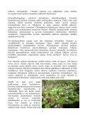 Viimeisin jäsentiedote - Suomen Reumatologinen Yhdistys - Page 4