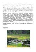 Viimeisin jäsentiedote - Suomen Reumatologinen Yhdistys - Page 5
