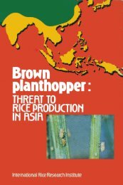 Brown planthopper - IRRI books - International Rice Research Institute