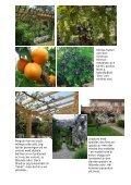 Atriumgård - Trädgårdsform Malmö - Page 5