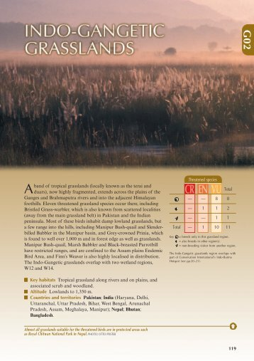 Indo-Gangetic grasslands (PDF, 442 KB) - BirdLife International