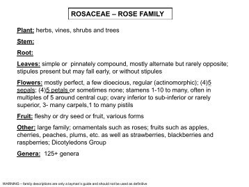 Rosaceae (Rose Family) - (Genera A to M) - Flora by Max