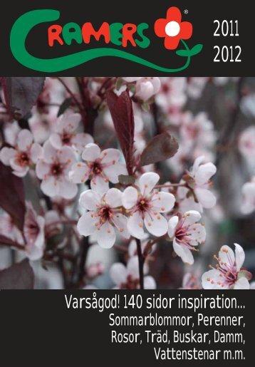 perenner - Cramers Blommor