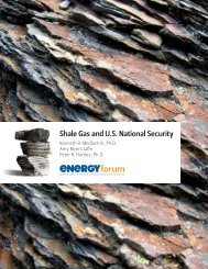 Shale Gas and U.S. National Security - James A. Baker III Institute ...