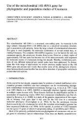 Crustacean Issues 12: 817-830