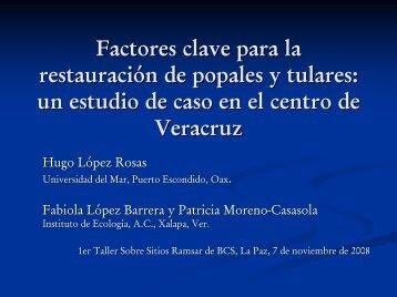 Factores clave para la restauración de popales y tulares: un estudio ...