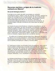 Recursos marinos y origen de la tradición culinaria en México*