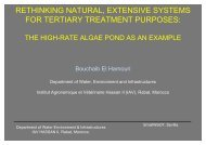 rethinking natural, extensive systems for tertiary treatment purposes