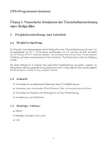 CFD-Programmier-Seminar Übung 1: Numerische Simulation ... - IAG