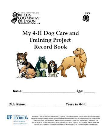 Animal experimentation essays