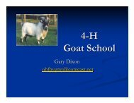 Come to 4-H Goat School! - Sarasota County Extension