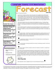 Langlade County 4-H Newsletter - Langlade County - University of ...