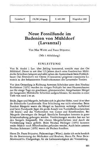 Neue Fossilfunde im Badenien von Mühldorf (Lavanttal)