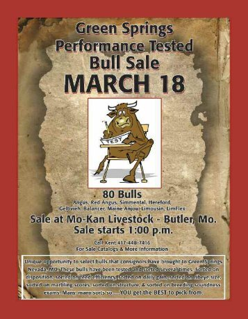 Sale Catalog - Green Springs Bull Test