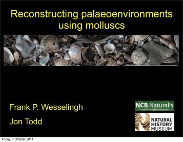 Mollusks and Environments Wesselingh and Todd