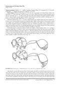 Full article - Magnolia Press - Page 7