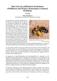 Rote Liste der gefährdeten Stechimmen (Wildbienen ... - LANUV NRW