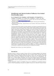 Identification and characterization of influenza virus isolated from ...