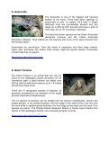 Attractions Of South America - Travel Amazing South America - Page 6